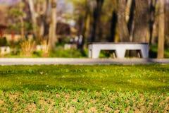dostępnej eps kartoteki kwiatów trawy ilustracyjny wiosna wektor Zdjęcie Royalty Free