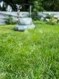 dostawać długi skoszonego trawie Fotografia Royalty Free