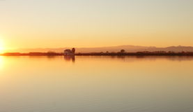 Dostawać opóźnionych ryżowych pola laguna Walencja Zdjęcia Royalty Free