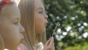 Dosyć małe blondynek dziewczyny dmucha z dandelion na pięknym pogodnym letnim dniu zbiory