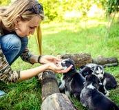 Dosyć mały łuskowaty szczeniak plenerowy w kobiet rękach obrazy royalty free