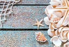 Dosyć nautyczny karciany projekt z seashells fotografia stock
