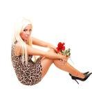 dosyć kolorowa smokingowa dziewczyna Fotografia Royalty Free