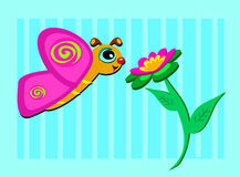dosyć motyli kwiat Zdjęcia Royalty Free