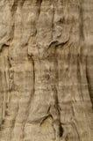 dotaci stary tekstury drewno Zdjęcia Royalty Free