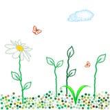 Dots spring meadow Royalty Free Stock Photos