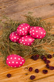 Dotted easter eggs Stock Photos