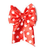 Dotted gift bow Stock Photo