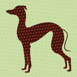 Dotted greyhound Royalty Free Stock Photography