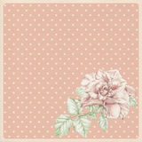 Dotted rose background with ros Royalty Free Stock Image