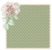 Dotted rose background with ros Stock Photography