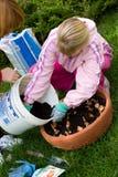 dottermoder som planterar tulpan Royaltyfri Fotografi