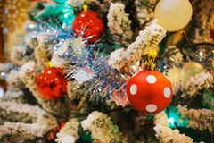 Dotty ball decorated on a Christmas tree Stock Images