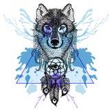 Dotwork-tatoo stilisierte Wolfgesicht mit dreamcatcher im Dreieck Lizenzfreie Stockfotografie