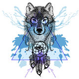 Dotwork tatoo stylized Wolf face with dreamcatcher  in triangle Royalty Free Stock Photography