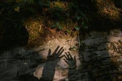 Dotyk ręka Cień palmy na kamieniu mech i paporotnika, zdjęcie royalty free
