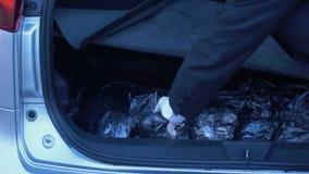 Douaneambtenaar in handschoenen die drugpakket van autovrachtwagen nemen, het onwettige handel drijven stock videobeelden