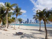 DOUBAI, de V.A.E - 02 FEBRUARI, 2014 Palmen, strand en wolkenkrabbers in de jachthaven van Doubai Royalty-vrije Stock Foto