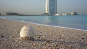 Doubai, de V.A.E - 21 Januari, 2018: Overzeese shell op het zandige strand van Doubai, reisconcept met Burj-al Arabier op de acht stock videobeelden