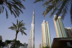 Doubai, de V.A.E - 15 Januari, 2016: De toren van Burjkhalifa De wolkenkrabber van Burjkhalifa tegen palmen in het centrum van Do Royalty-vrije Stock Foto