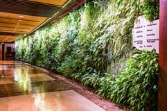 doubai In de zomer van 2016 Modern en helder binnenland met muren van het leven installaties en marmeren decoratie in het hotel S Stock Fotografie