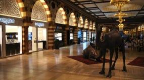 DOUBAI, VERENIGDE ARABISCHE EMIRATEN - 31 MAART, 2014: Gouden Souk binnen van de Wandelgalerij van Doubai royalty-vrije stock foto