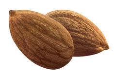 Double almond isolated on white background Royalty Free Stock Image