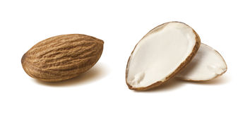 Double almond nut half isolated on white background Stock Photo