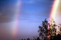 Double arc-en-ciel au-dessus de forêt photo stock