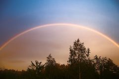 Double arc-en-ciel au-dessus de forêt photographie stock libre de droits