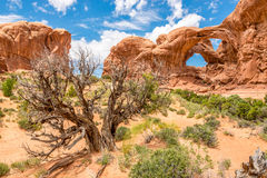 Double Arch Stock Photo