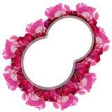 Double bannière blanche ronde au-dessus d'isolat coloré de fleur de rose sur le fond blanc Photos stock