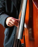 Double Bass 1 Royalty Free Stock Images
