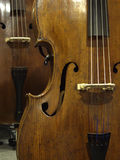 Double-Bass. Four-string double bass with violin-corners, showing top table, bridge, strings, f-hole, bouts, purfling, tailpiece Stock Photography