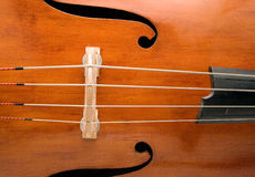 Double Bass Royalty Free Stock Photo