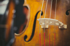 Double bass bridge and string close up Stock Photos