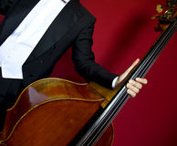 Double bass. Close-up of double bass, wooden musical instrument that is played with a bow stock images