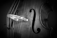 Double bass Stock Image
