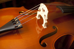 Double bass-closeup Royalty Free Stock Image