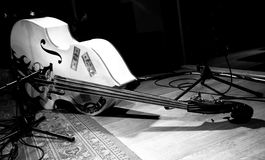 Double Bass (Contrabass) Royalty Free Stock Images