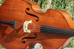 Double bass / contrabass outdoors in the sun. royalty free stock images