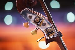 Double bass detail. Close-up detail of double bass over blurred background. Shallow DOF royalty free stock photos