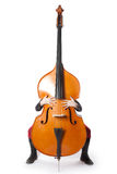 Double bass with hands and feet Royalty Free Stock Photo