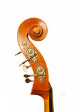Double-bass head. One double-bass on white background royalty free stock photos