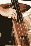 Double Bass Instrument. The double bass instrument is vital to the band. It helps keep all musicians in tune and rhythm.  People flock to musical concerts to royalty free stock photo