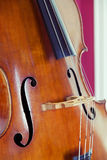 Double bass Royalty Free Stock Image
