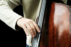 Double bass player. A male playing double bass. Isolated. Close-up on fingers Royalty Free Stock Photography
