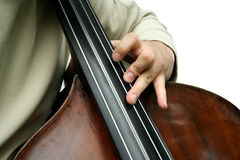 Double bass player. A male playing double bass. Isolated. Close-up on fingers Royalty Free Stock Images