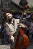Double bass player. Stock Images