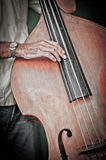 Double bass player,cuba Stock Image